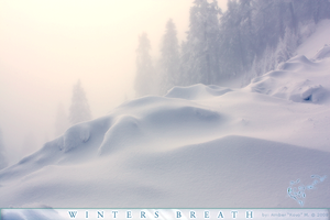 Winters Breath by KovoWolf