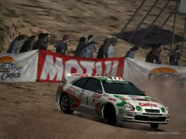 Reminds me of sega rally by IlyaRacer