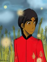 India at the Field : APH OC by IndiaofAsia