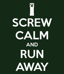 Minecraft - Screw Calm by Kunstlerromanable