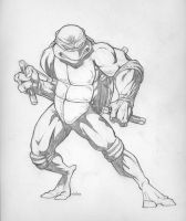 Michaelangelo by Martinez23