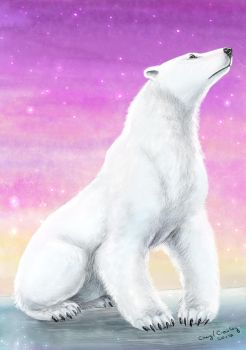Polar Bear by silvercrossfox