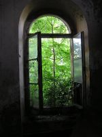 window 06 by Caltha-stock