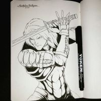 Raiden MGS 2 Sons Of Liberty by DarkEmperor00