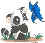 Pandas and Butterflies by Aludra