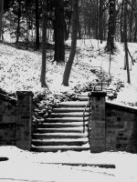 Frost and Front Steps by CSStriker