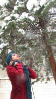 let it Snow by Remedios-MouRn