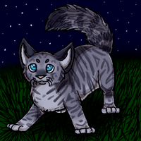 .:Jayfeather:. by graciegra