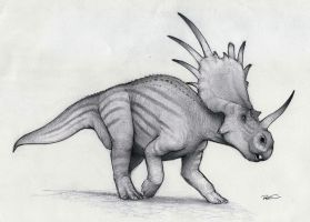 Styracosaurus by RobtheDoodler