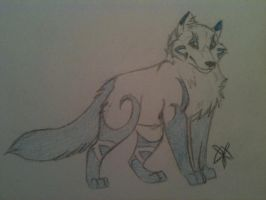 Pup Design- Atima/Lyen by Demon-Child-13