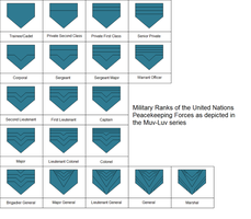UN rank insignia as depicted in Muvluv Alternative by kyuzoaoi