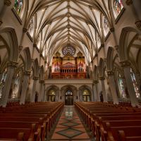 Cathedral Organ by TomFawls