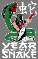 Ophidian - Year of the Snake shirt design by quibly