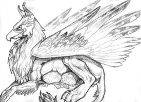 Griffen by XxMOO-MOOxX