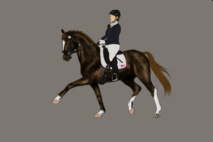 Fairy HARPG-Grand Prix Dressage WIP I by RvS-RiverineStables