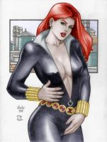 The Black Widow by MrLively