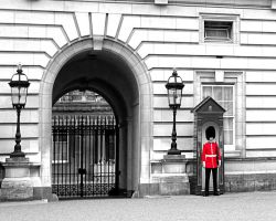 Buckingham Palace Guard by carbon136