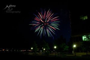 Independence Day 6 - 2013 by Nebey