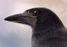 Crow by Trutze