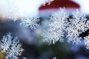 Frosted Glass by lOveLifeOx