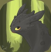Toothless by Tulidragon