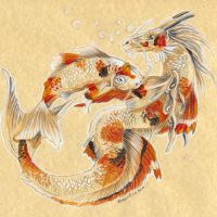 Koi Buddies by Hbruton