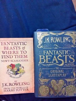 My fantastic beasts and where to find them books by aliciamartin851