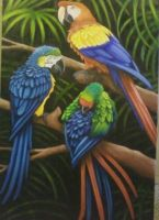 A Company of Macaws by la-sirena