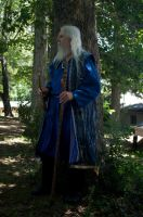 2014-08-13 Wizard in Blue 02 by skydancer-stock