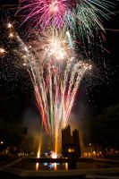 Fireworks by borda