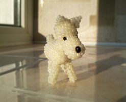 Scottish terrier by katialumik