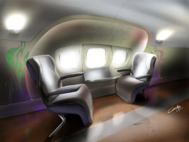 Executive Jet interior by Carloske