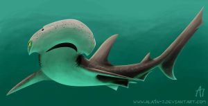 BonnetHead Shark by ALA1N-J