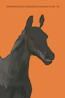 Equine Digital First Try WIP by UnbornLegacyArt