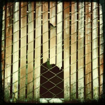 Caged Entrance by Alizzo