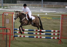 STOCK Showjumping 508 by aussiegal7