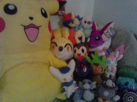 pokemon collection update :o by mothes
