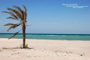 Bahrain by Miss-Photo