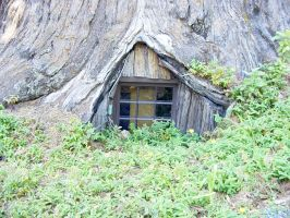 House Beneath a Tree: Stock Image by AskGriff