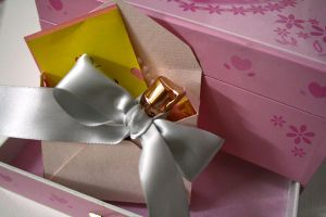 Gift Packaging 03 by Erin1392