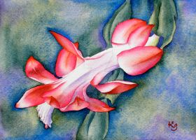 Christmas Cactus IV by IvieMoon