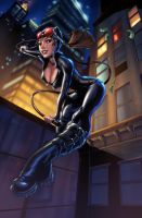 harpokrates_catwoman__colors_vic55b by vic55b