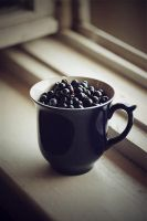 blueberry cup by IceAmi