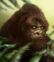 Sasquatch by Daz18