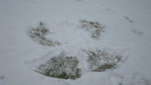 My Snow Angel by KaidaSerenity
