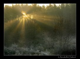 Frost by Annabelle-Chabert