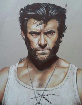 The Wolverine - coloured drawing by tofu0004