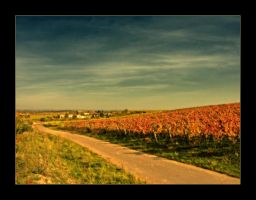 The Land of Wine And Honey by StarsRevolt