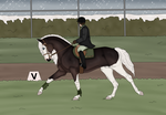 [Pay] Evergreen dressage training by DobbysCookieSock