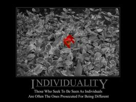 Individuality by maxplay